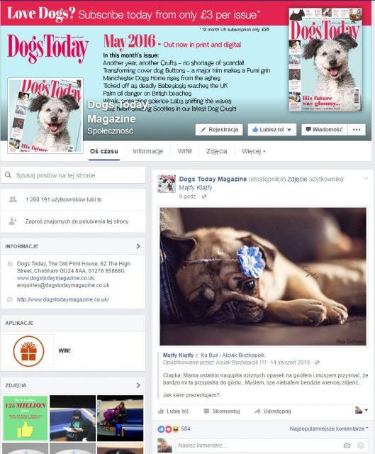 Dogs Today Magazine publication Alicja Duchiewicz