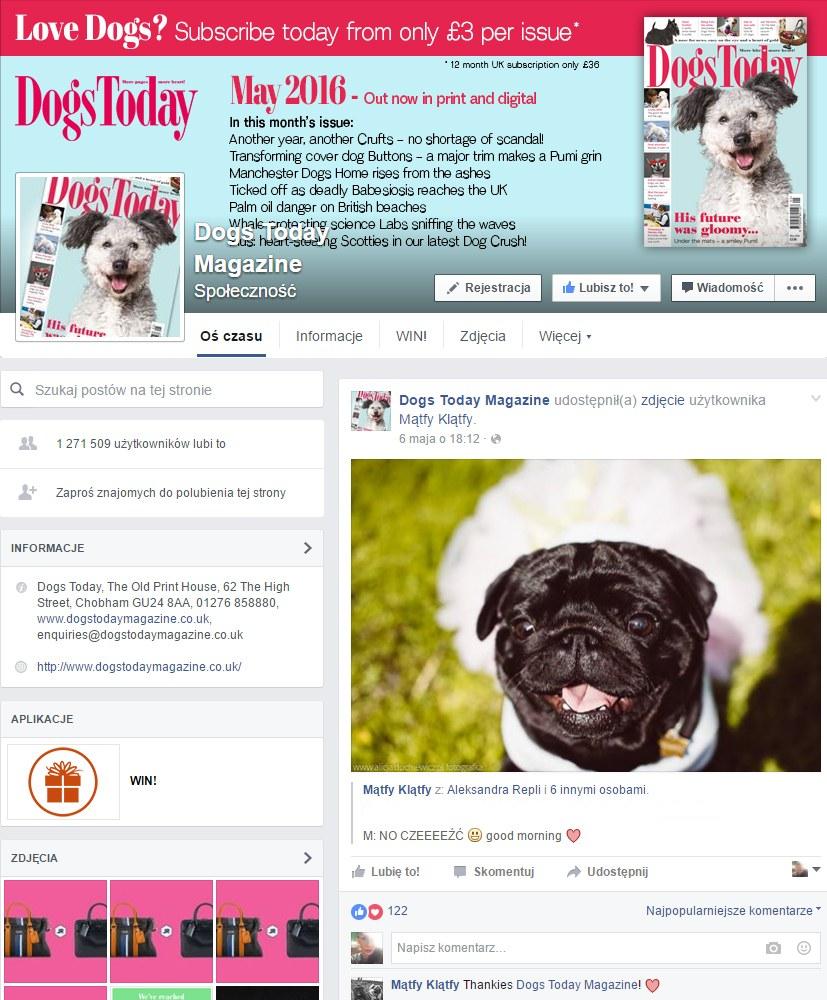 Publikacja zdjęcia mojego autorstwa na fanpage magazynu Dogs Today Magazine, który ma 1.2mln fanów na facebooku. kwiecień/2016,
